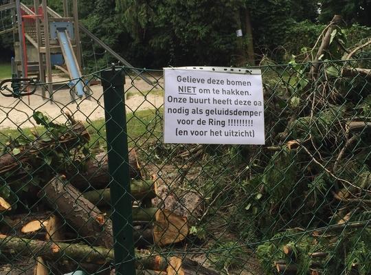 De bomen aan het speelplein aan de Joe Englishstraat werden toch gerooid.